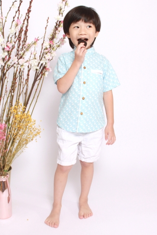 Orabelle Shirt in Baby Sparrow (Little Boy)