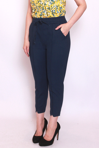 Charlotteton Pants in Navy