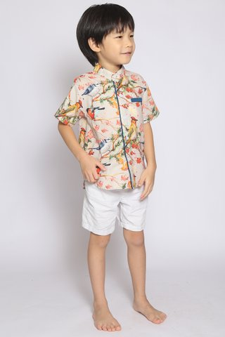 Fang Shirt in Sparrow (Boys)